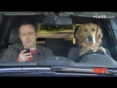 perro-lazarillo-smartphone
